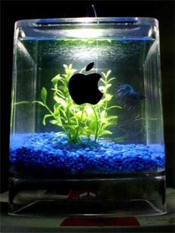 Давайте посмотрим, что можно сделать из старых Маков.  Истинный поклонник Apple никогда не сможет отправить на свалку...